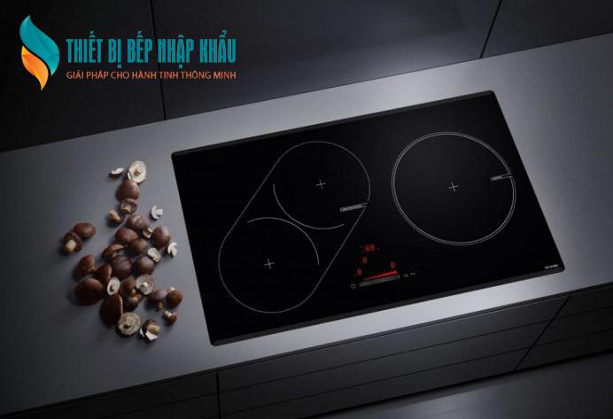 Bếp từ malmo 1